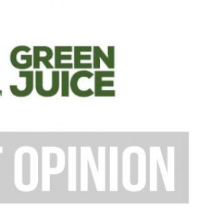 Organifi Green Juice Review – DON'T BUY UNTIL YOU READ MY HONEST OPINION